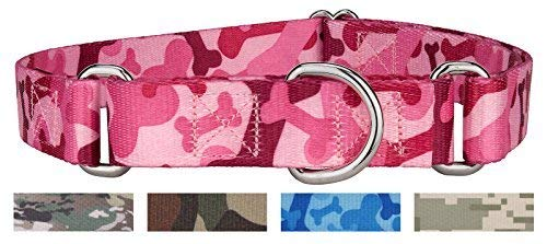Collar Bone Dog Adjustable (Country Brook Petz Martingale Dog Collar - Military and Camo Collection (Medium 1 Inch Wide, Pink Bone Camo))