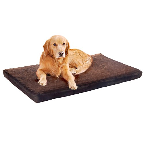 extra-large-paw-memory-foam-dog-bed-with-removable-cover-46-x-27