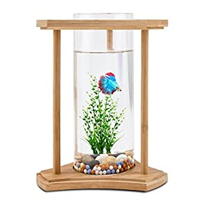 segarty desktop fish tank bamboo unique design small fish bowls with glass vase. Black Bedroom Furniture Sets. Home Design Ideas