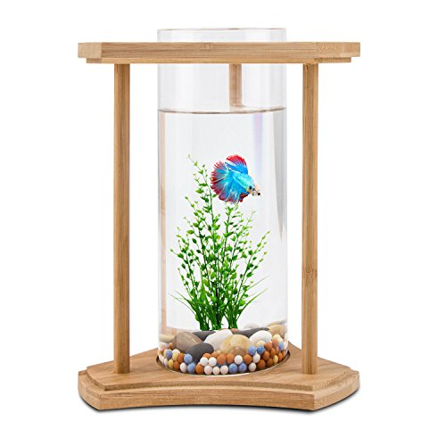 Unique design desktop fish tank bamboo segarty small for Small fish tank