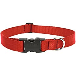 "LupinePet Basics 1"" Red 12-20"" Adjustable Collar for Medium and Larger Dogs"