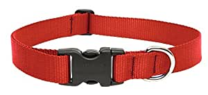 """LupinePet Basics 1"""" Red 12-20"""" Adjustable Collar for Medium and Larger Dogs"""