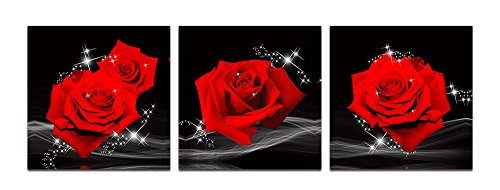 XM Art-Love Of Red Roses Modern Decorative Wall Canvas Print Set Of 3pcs 50*50cm