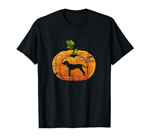 Leopard Halloween Costume Ideas (Vintage Catahoula Leopard Pumpkin Costume Halloween Tee)