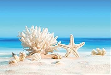 OFILA Summer Sandbeach Photos Backdrop 10x6.5ft Seaside Photography Background Seashell Starfish Photos Summer Party Decoration Festival Celebration Travel Photos Props