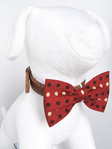 Gingerbread Polka Dot - Hand Stitched Bow Tie Collar Accessory for Dog Cat Pet