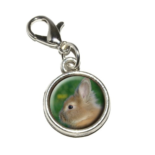 Graphics and More Bunny Rabbit Brown Tan Easter Antiqued Bracelet Pendant Zipper Pull Charm with Lobster - Bunny Antiqued