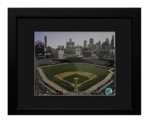 Encore Select 140-63 MLB Detroit Tigers  Deluxe Frame Comerica Park Print, 11-Inch by ()