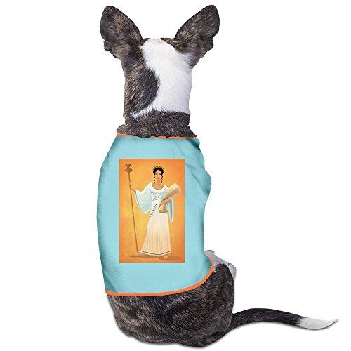 [The Goddess Of The Harvest Demeter M Dog Clothes] (Ceres Goddess Costume)