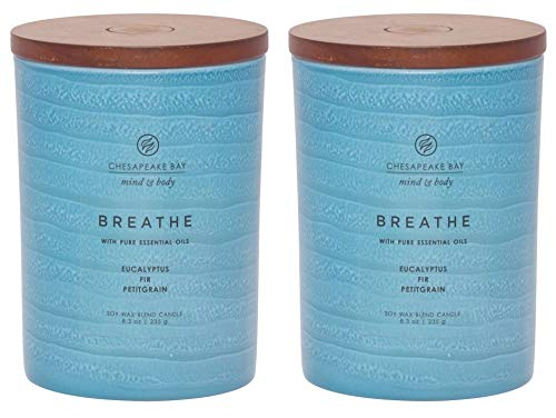 Chesapeake Bay Candle Mind & Body Serenity Scented Candle, Breathe with Pure Essential Oils (Eucalyptus, Fir, Petitgrain), Medium, 2 Count