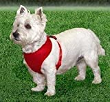 Coastal  Comfort Soft Adjustable Dog Dog Harness – Red Small For Dogs 11-18 lbs, My Pet Supplies