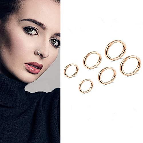 G23 Titanium Septum Ring Hinged Nose Rings for Women 16G Hoop Segment Rings Sleeper Earrings Body Piercing Jewelry Black/Silver/Gold/Rose Gold Rings, Diameter 6mm,8mm,10mm(6pcs) (Rose Gold)