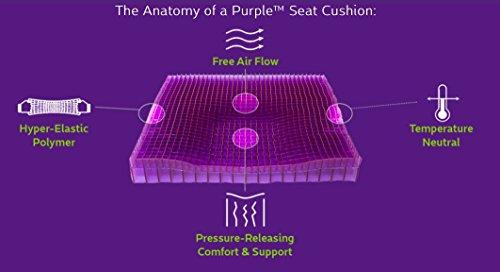 The Purple Back No Pressure Seat Cushion