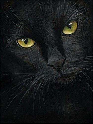 LIPHISFUN 5D DIY Diamond Painting Full Drill Square Resin Rhinestone Embroidery Unfinished Cross Stitch Home Decor Gift Black Cat(30x40cm) (Cat Stitch Cross Black)