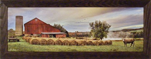 Country Framed Prints - 2