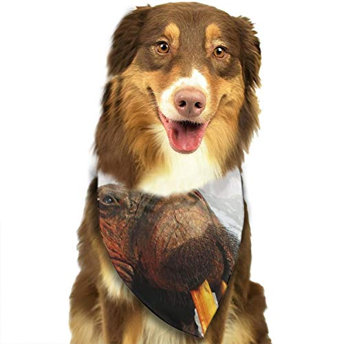 Dog Bandana Triangle Scarfs Puppy Bibs Accessories, Walrus Mountain, for Dogs, Cats, Pet Birthday Party Gifts Supplies -