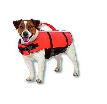 Aquo - Perros salvavidas Perros Mantel - Perros Natación Chaleco - Naranja - con cierre de seguridad - XS a XL: Amazon.es: Productos para mascotas