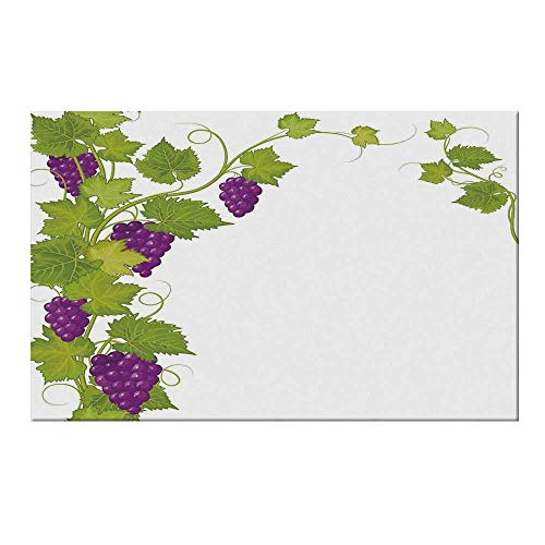 (YOLIYANA Grapes Home Decor Durable Door Mat,Latin Brochure Label Italian Town Province Vintage Menu Sign Artwork for Home Office,19.6