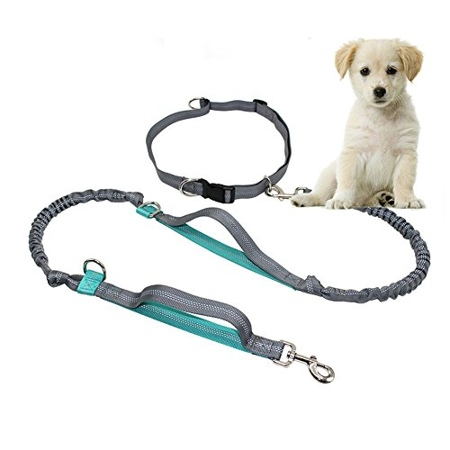 Pupet Hands Free Dog Leash, Retractable Dog Leashes Dual Handle Extra Long Running Dog Leash with Adjustable Waist Belt for Walking Running Hiking Jogging (Blue) by Pupet