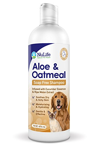 Oatmeal Shampoo For Dogs With Soothing Aloe Vera, Suitable For All Pets, With Cucumber Essence and Ripe Melon Extract, Hypoallergenic, Soap-Free Formula Provides Relief From Dry, Itchy Skin, 16 Oz (Formula Free Soap)