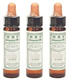 (3 PACK) - Dr Bach - Gorse Bach Flower Remedy | 10ml | 3 PACK BUNDLE