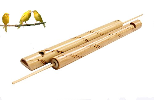 Blue Mango. Bamboo Bird Flute Traditional Wooden Musical Instrument Traditional make sound like bird Easy fun to play Just blow the flute while pull-out push-in the stick in the flute to create sound.