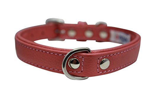 """Leather Dog Collar, Padded, Double Ply, 14"""" x 3/4"""", Pink, Leather (Alpine) Miniature Poodle, Bichon Frise, Min Pin"""