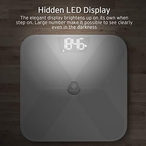 Etekcity Digital Body Scale 400
