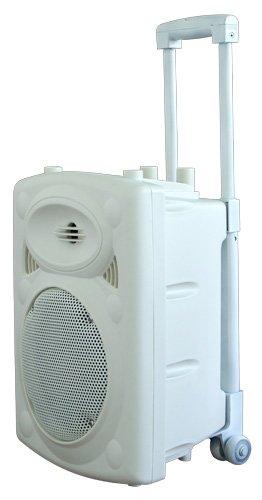 536 opinioni per Ibiza PORT8VHF-BT-WH Impianto audio portatile cassa attiva (400 Watt, ingressi