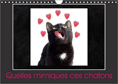 En ligne téléchargement gratuit Quelles mimiques ces chatons : Calendrier mural A4 horizontal 2016 pdf, epub