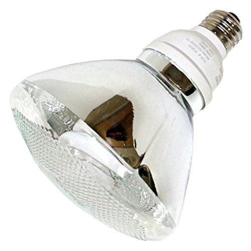 TCP 2P3819 CFL Covered PAR38 - 85 Watt Equivalent (only 19w used!) Soft White (2700K) PAR Flood Light Bulb - Wet Location Rated (Fluorescent 19 Watt Par38 Reflector)