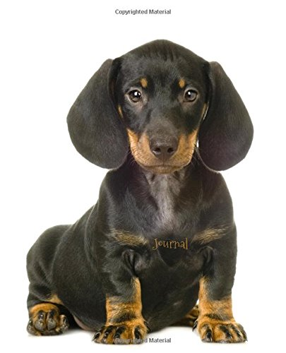 Read Online Journal: Dachshund Puppy PDF
