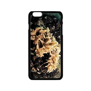Unique Coral Hight Quality Plastic Case for Iphone 6