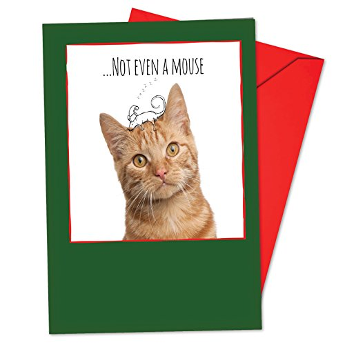 (12 'Feline Graffiti Mouse' Boxed Christmas Cards with Envelopes 4.63 x 6.75 inch, Kitty and Black and White Illustrations Holiday Notes, Cat with Mouse Doodle Cards, Orange Kitten Cards B6583FXSG)