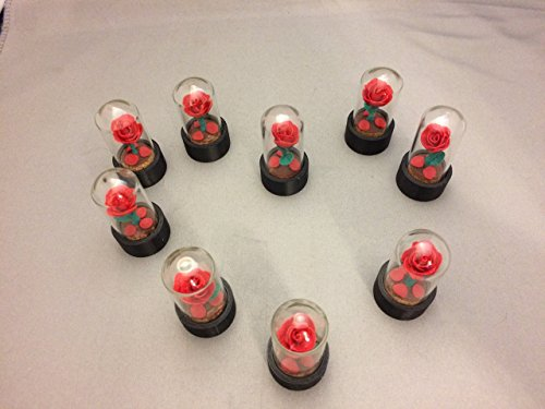 Beauty and the Beast Mini Roses, FREE SHIPPING, Red Rose fallen Petals, Enchanted Rose, Forever Rose ()