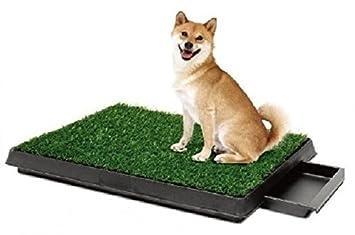 Amazon.com : Pee Wee Dog Park Indoor Dog Toilet Deluxe : Pee Wee Dog ...