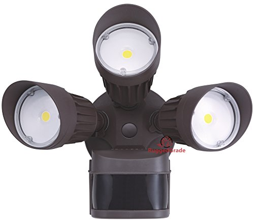 LED Motion Sensor Flood Light