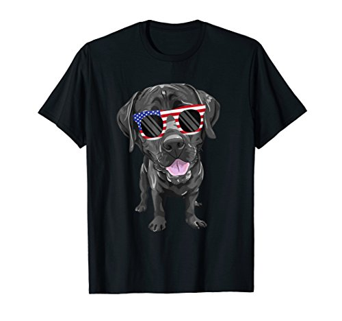 Funny Chocolate Lab American Flag Dog T-Shirt 4th of july
