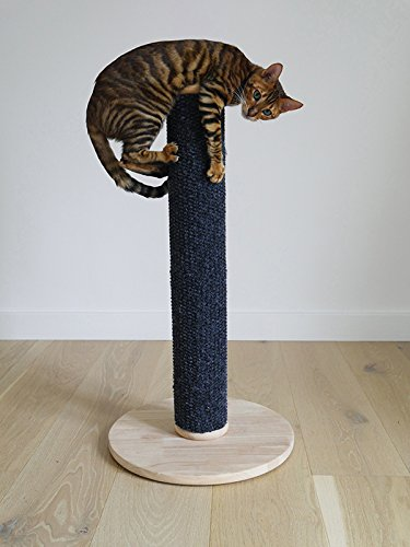 Rosewood Tall And Modern Cat Scratch Pos Buy Online In Aruba At Desertcart