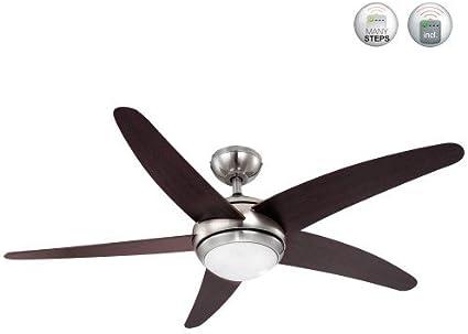 Globo 306 - Ventilador para el techo con lámpara: Amazon.es ...
