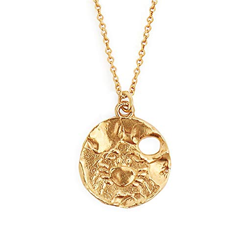 12 Constellations Pendant Gold Plated Zodiac Sign Long Necklace for Women and Men with 25