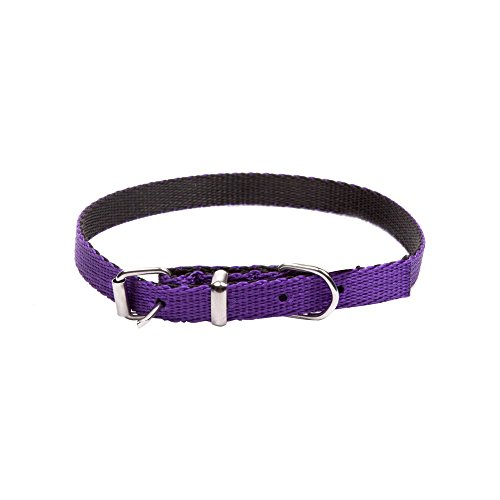 Dingo Dog Collar Handmade Purple with Black Contrast 14581
