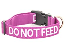 """Dexil Limited Do Not Feed Purple Color Coded S M L XL Buckle Dog Collars Prevents Accidents by Warning Others of Your Dog in Advance (S-M Collar 10-17"""" Lx1 W)"""