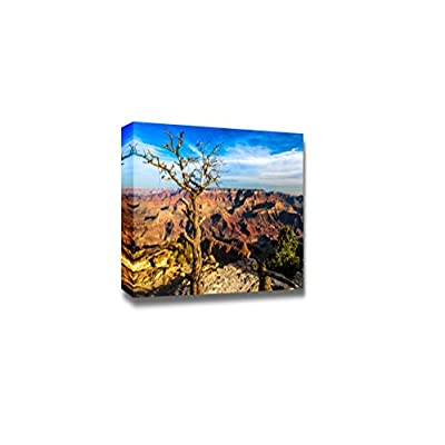 Canvas Prints Wall Art - Landscape View of Grand Canyon with Dry Tree | Modern Wall Decor/Home Art Stretched Gallery Canvas Wraps Giclee Print & Ready to Hang - 16