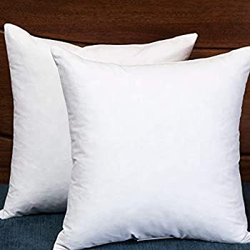 Set of 2, Square Decorative Throw Pillows Inserts Down and Feather Pillow Insert, Cotton Fabric, 26X26 Inches
