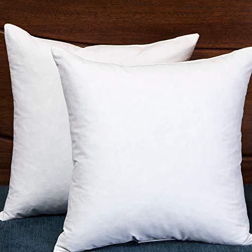 Set of 2 18X18 Square Decorative Throw Pillows Down & Feathe