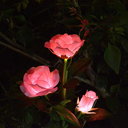 LAMPDREAM Solar Garden Lights Outdoor Decorative Rose Flowers Lights Waterproof Solar Stake Lights for Garden Pathway Yard Graveside Decor, Pink