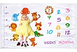 Baby Monthly Milestone Blanket for Girl or Boy | Photography Backdrop for Newborn Infant's First Year Photo | Large Premium Baby Blanket | Extra Plush and Soft