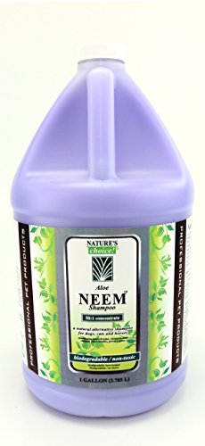 Nature's Choice Aloe Neem Shampoo 50:1 Gallon