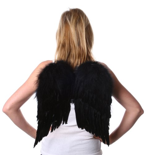Zucker Feather Products Decorative Feather Angel Wings, Small (Halloween Black Angel Wings)